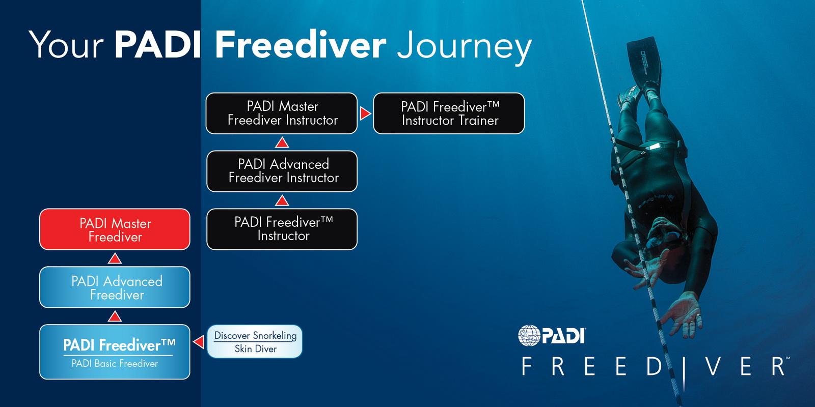 PADI Freediving Kurse Flowchart