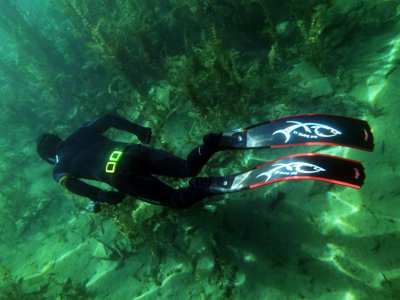 Apnoetaucher schwimmt über den Seeboden