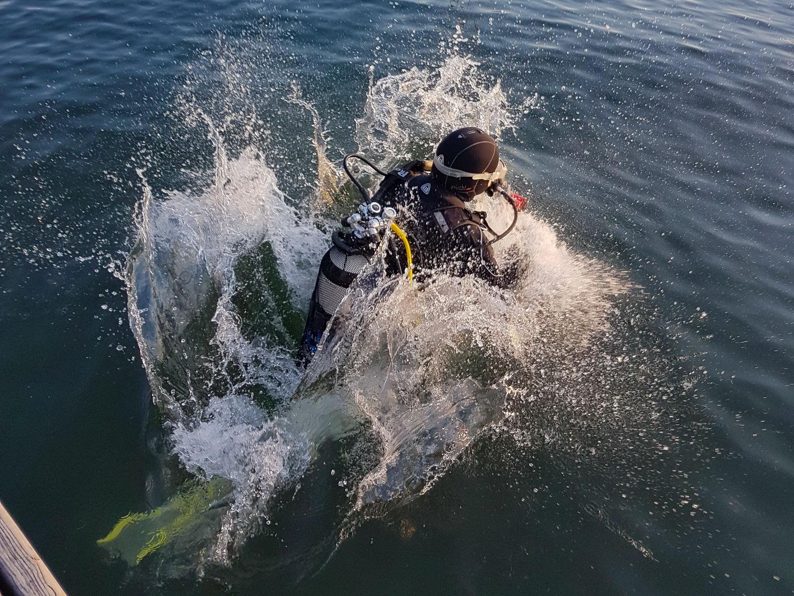 Taucher springt ins Wasser