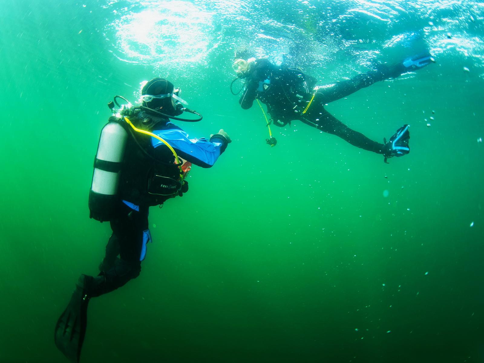 Abtauchen beim PADI Open Water Diver