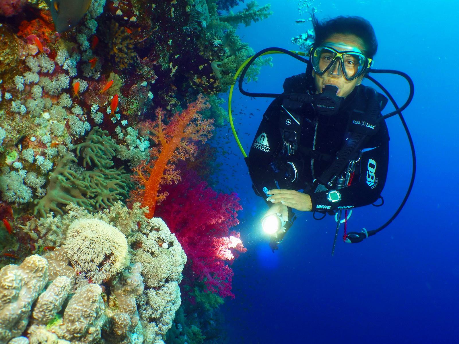 Ziel des Tauchkurs: Tauchgang im Meer