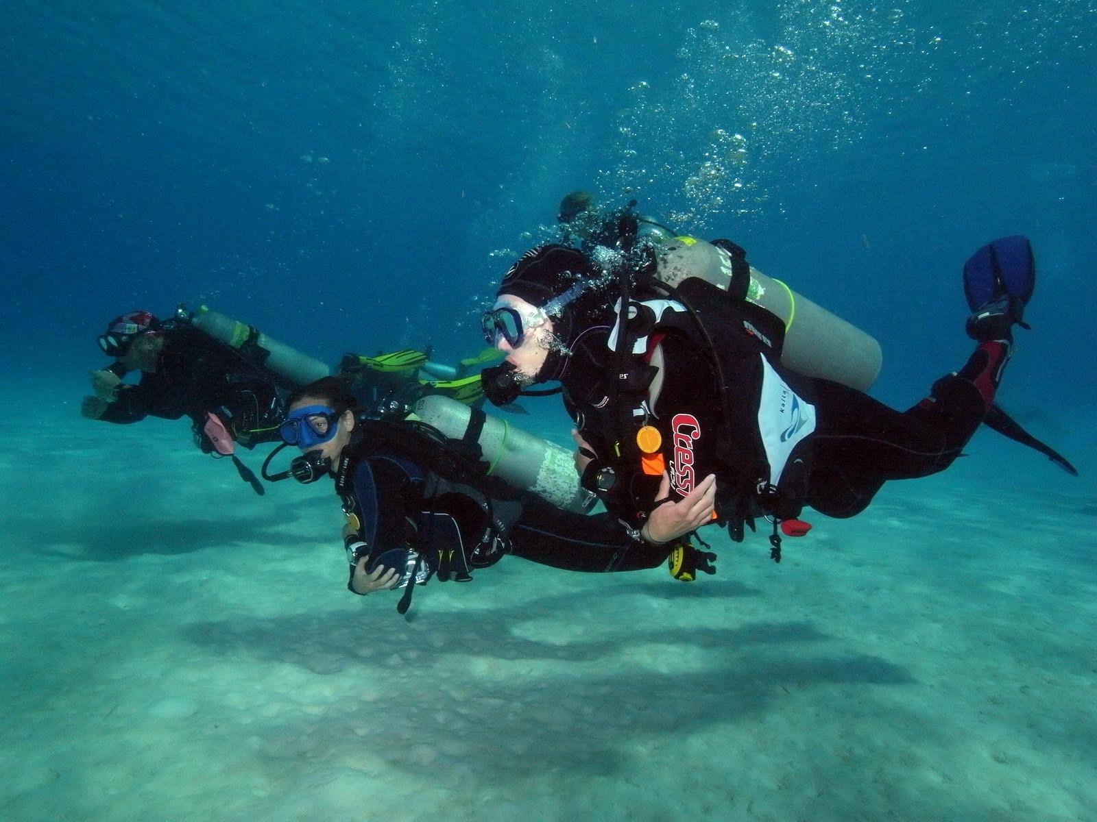 Erkunden der Unterwasserwelt - Tauchen lernen