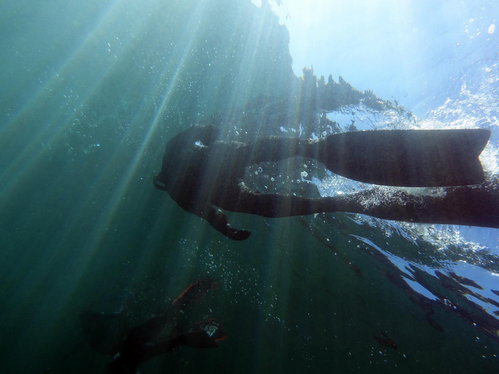 Freediver nähert sich der Wasseroberfläche