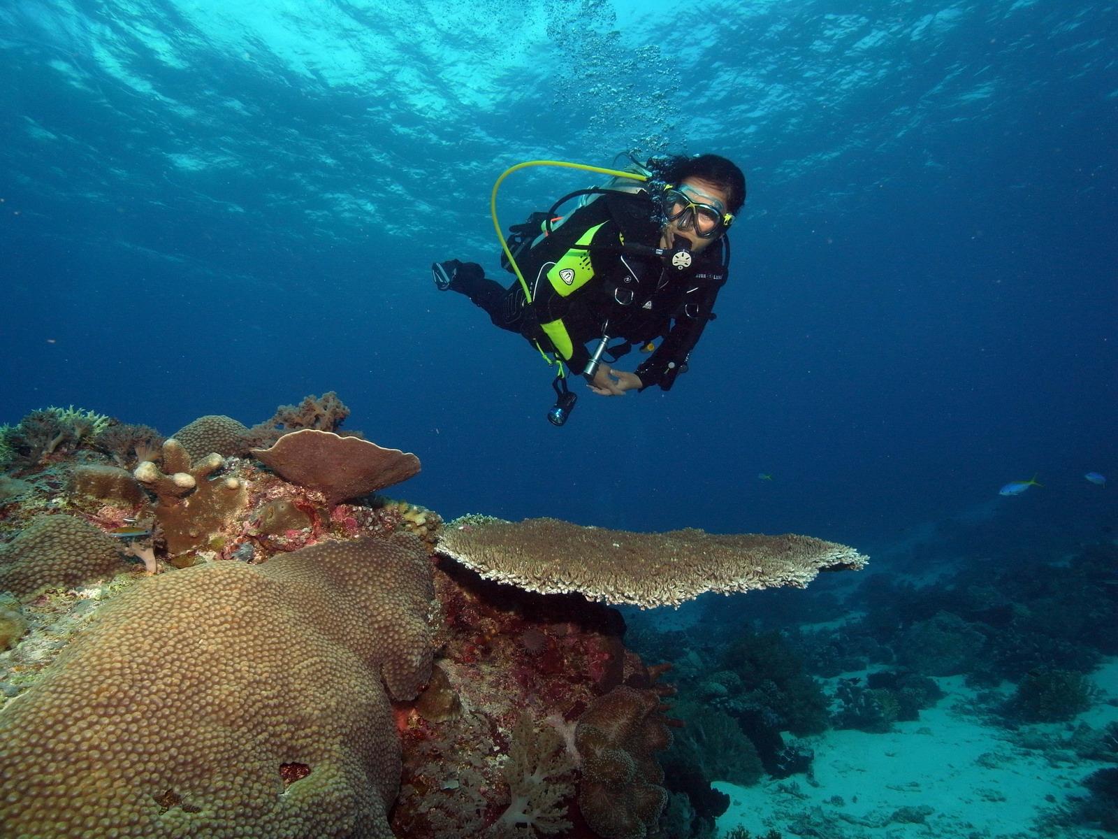 Taucher mit perfekter Tarierung über Riff