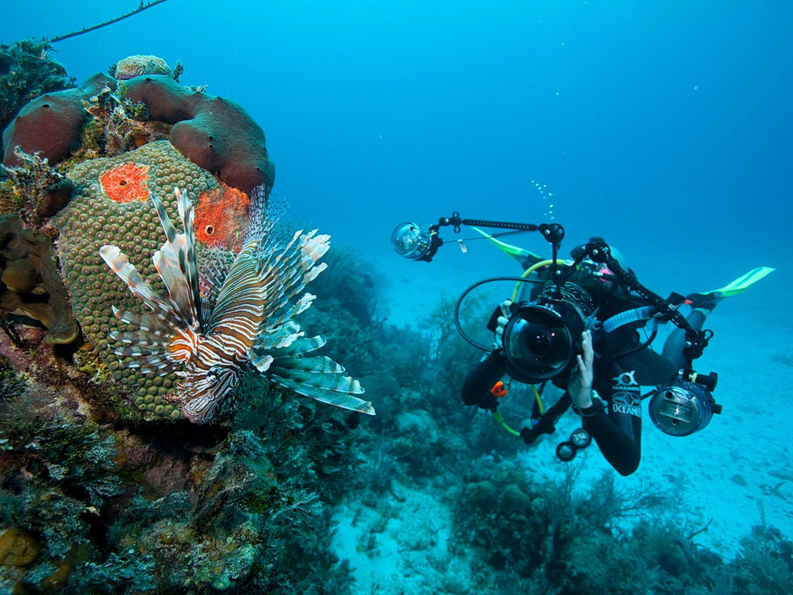 Taucher mit Unterwasserkamera mit Fisheye