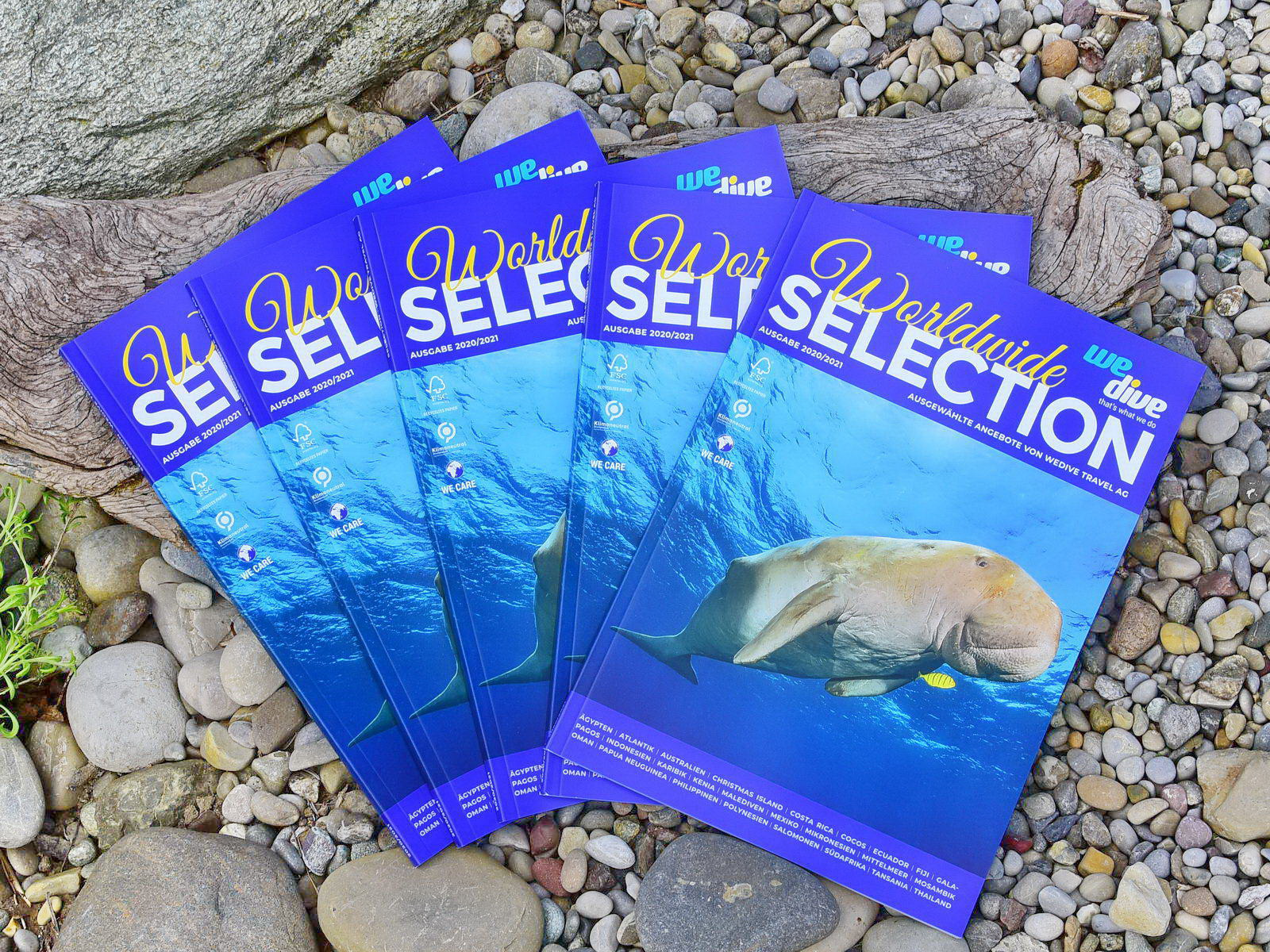 We dive Tauchen Catalog
