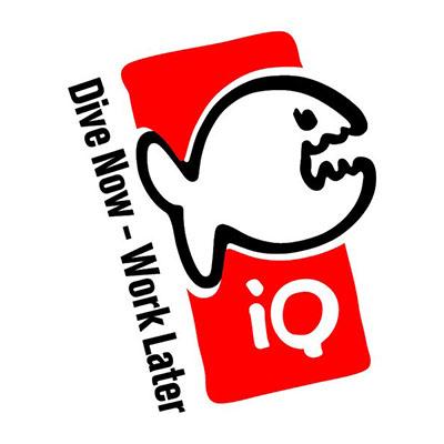 IQ-Company Bekleidung Logo