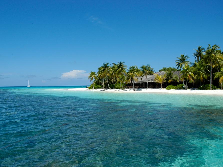 Besuchen Sie Ihr Tropenparadies